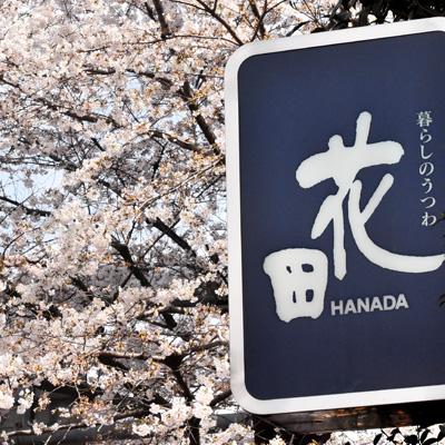 桜の時期の店舗