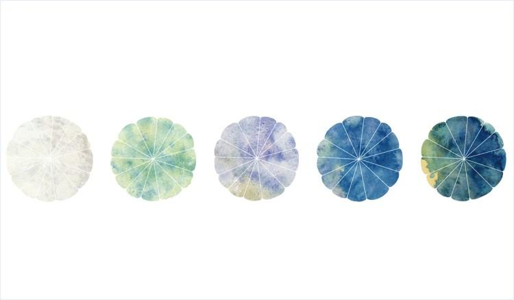 青の花小付